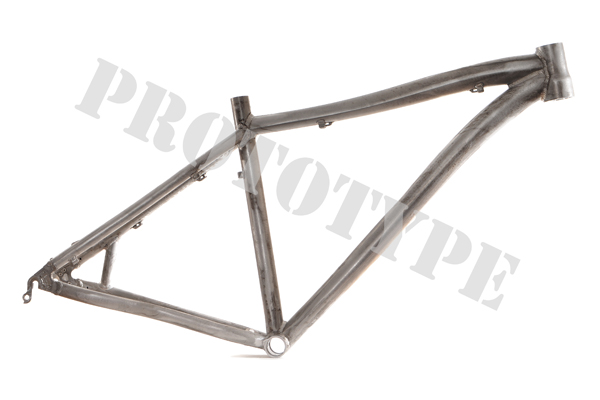 Titus long travel aluminium 29er prototype